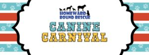 hbr canine carnival